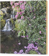 Rhododendron Flowers By Waterfall Wood Print