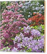 Rhododendron Garden Wood Print