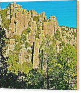 Rhyolite Columns On Ed Riggs Trail In Chiricahua National Monument-arizona Wood Print