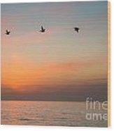 Rhythm Of The Sunset   Wood Print