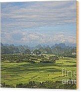 Rice Farming In China Wood Print
