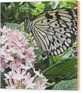 Rice Paper On Flower Wood Print