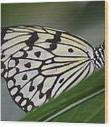 Rice Paper On Leaf Wood Print