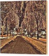 Rice Park Saint Paul Wood Print