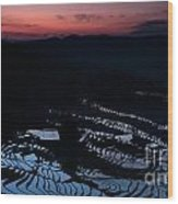 Rice Terrace After Sunset Wood Print