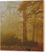 Richmond Park 11 Wood Print