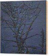 Rich's Pool Wood Print