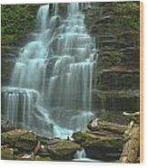 Ricketts Glen Cascading Falls Wood Print