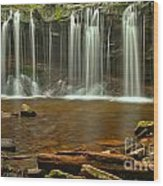 Ricketts Glen Oneida Falls Wood Print