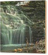 Ricketts Glen Shawnee Waterfall Wood Print