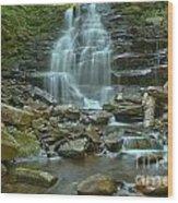 Ricketts Glen Waterfall Canyon Wood Print