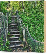 Rickety Stairs Wood Print