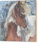 Pinto Pony Wood Print