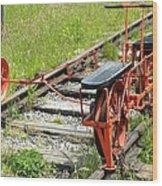Ride The Rail Wood Print