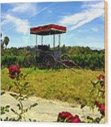 Rideau Vineyards Solvang California Wood Print