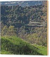 Ridge View Wood Print
