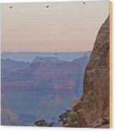 Riding The Air Currents Of The Grand Canyon Wood Print