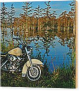 Riding The Mississippi Delta Wood Print