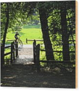 Riding The Trails Wood Print