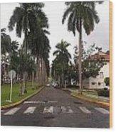 Right Side El Prado Sidewalk Wood Print