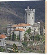 Rihemberk Castle Wood Print
