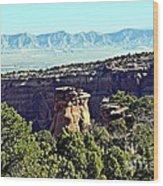 Rim Rock Scenic Lookout Wood Print