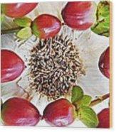 Ring Around The Garlic Wood Print