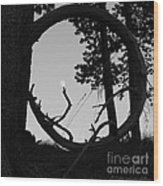 Ring Around The Moon Wood Print