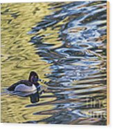 Ring-neck Reflections Wood Print