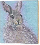 Easter Bunny Painting - Ringo  Wood Print