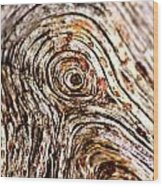 Rings Wood Print by Jacqui Collett