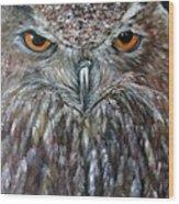 Rings Of Fire, Owl Wood Print