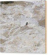 Rio Grande Kayaking Wood Print