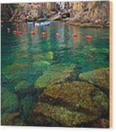 Riomaggiore Bay Wood Print