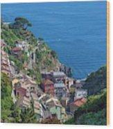 Riomaggiore, Cinque Terre, Italy Wood Print