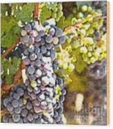 Ripe Grapes Wood Print