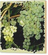 Ripe On The Vine Wood Print