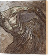 Ripper Van Winkle Wood Print by Jeremy McHugh