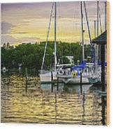Ripples At Sunset Wood Print by Brian Wallace