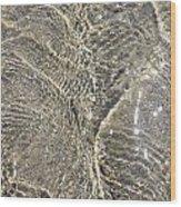 Ripples In The Sea Wood Print