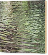 Ripples On Florida River Wood Print