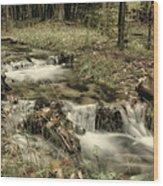 Ripplin' Waters Wood Print