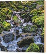 Rippling Rainforest Wood Print