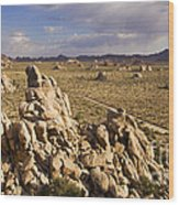 Rise Of Gneis Rock Formations Wood Print