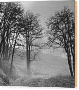 Rising Mists In The Bald Hills Wood Print