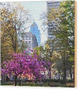 Rittenhouse Square In Springtime Wood Print