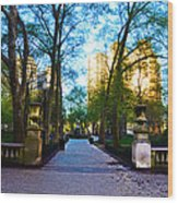 Rittenhouse Square Park Wood Print