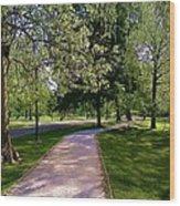 Ritter Park Paths Wood Print