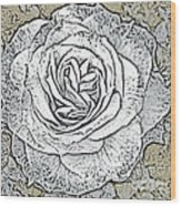 Ritzy Rose With Ink And Taupe Background Wood Print
