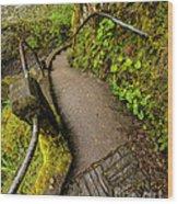 Exploring Columbia River Gorge - Highway 30 Wood Print